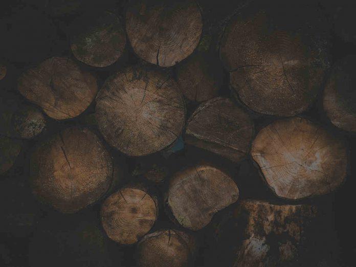 Charakterystyka budowy domów drewnianych